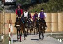 Narni, zero doping sui cavalli della corsa all'anello